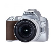 Фотоаппарат Canon EOS 250D Kit 18-55 IS STM silver